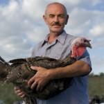 Heritage turkey farmer Frank Reese
