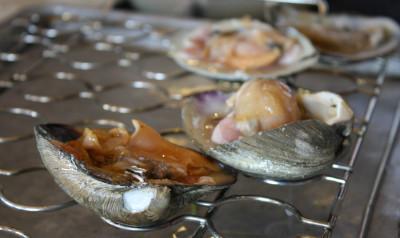 Clams on shellfish rack