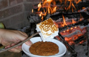 National S'mores Day Is Coming Up: Here Are 10 New Ways to Celebrate