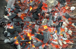A Crash Course on Charcoal: Types of Charcoal for Grilling