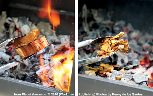 Wood-chips-chunks-with-credit