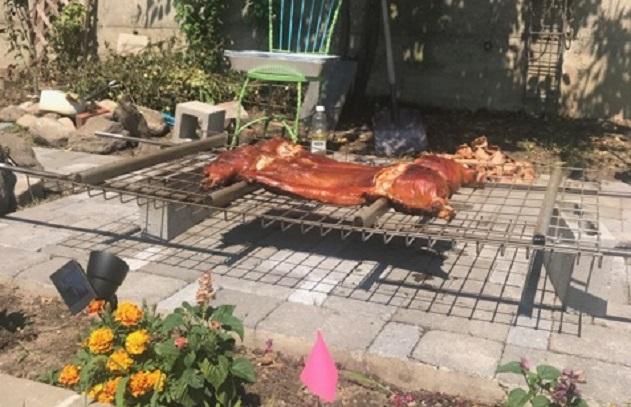 A Pit, A Pig, A Party