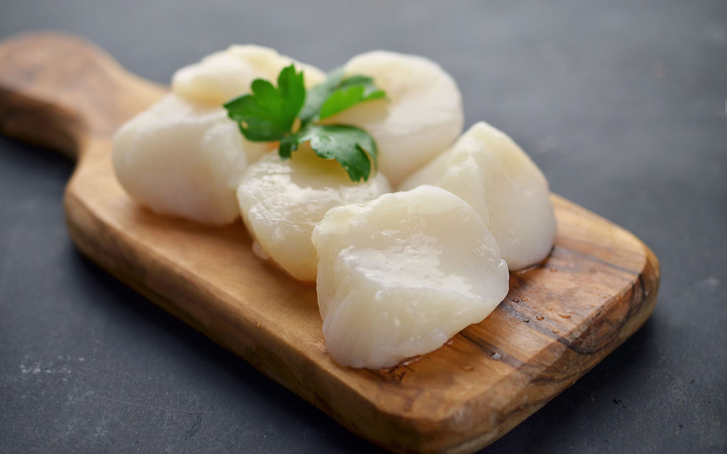 How to Grill Scallops